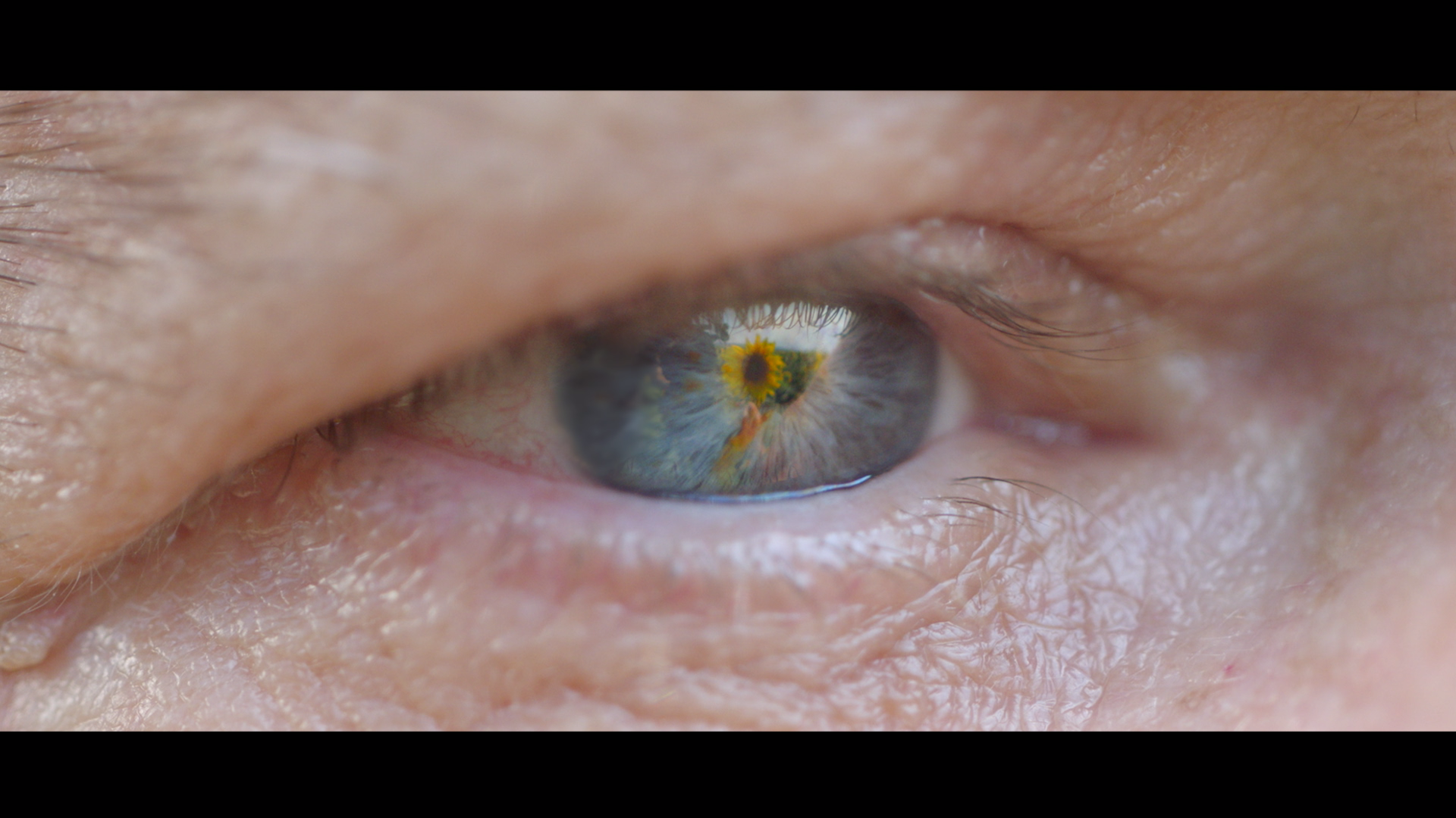 Poza din clip